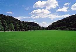 7山田緑地