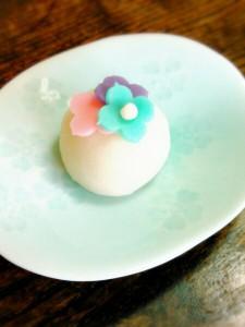 LINEcamera_share_2015-05-25-13-44-44あじさい